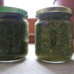 pesto ortie plantes sauvages