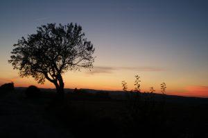 coucher de soleil cordes sur ciel
