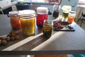 aliments fermenté ateliers Tarn