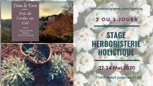stage en herboristerie