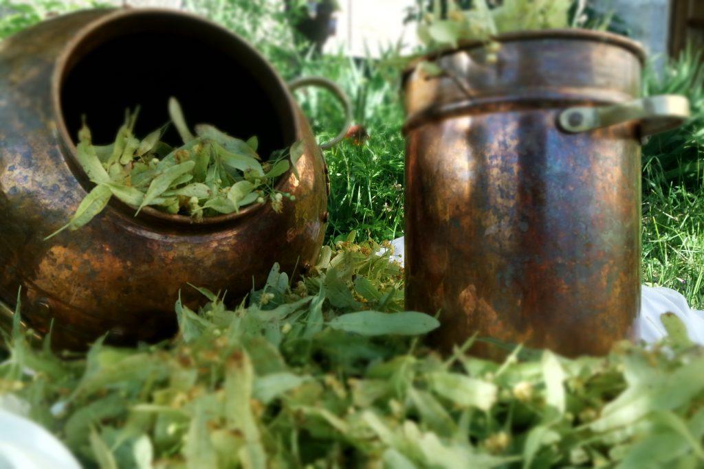 distillation eau florale alambic