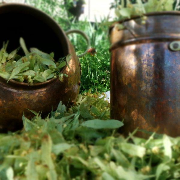 Eaux florales/hydrolats