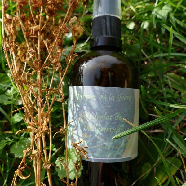 eau florale de millepertuis bio