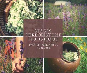 formation herboristerie plantes médicinales