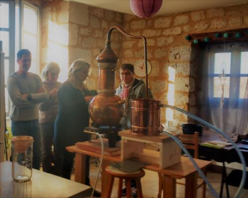 atelier distillation alambic